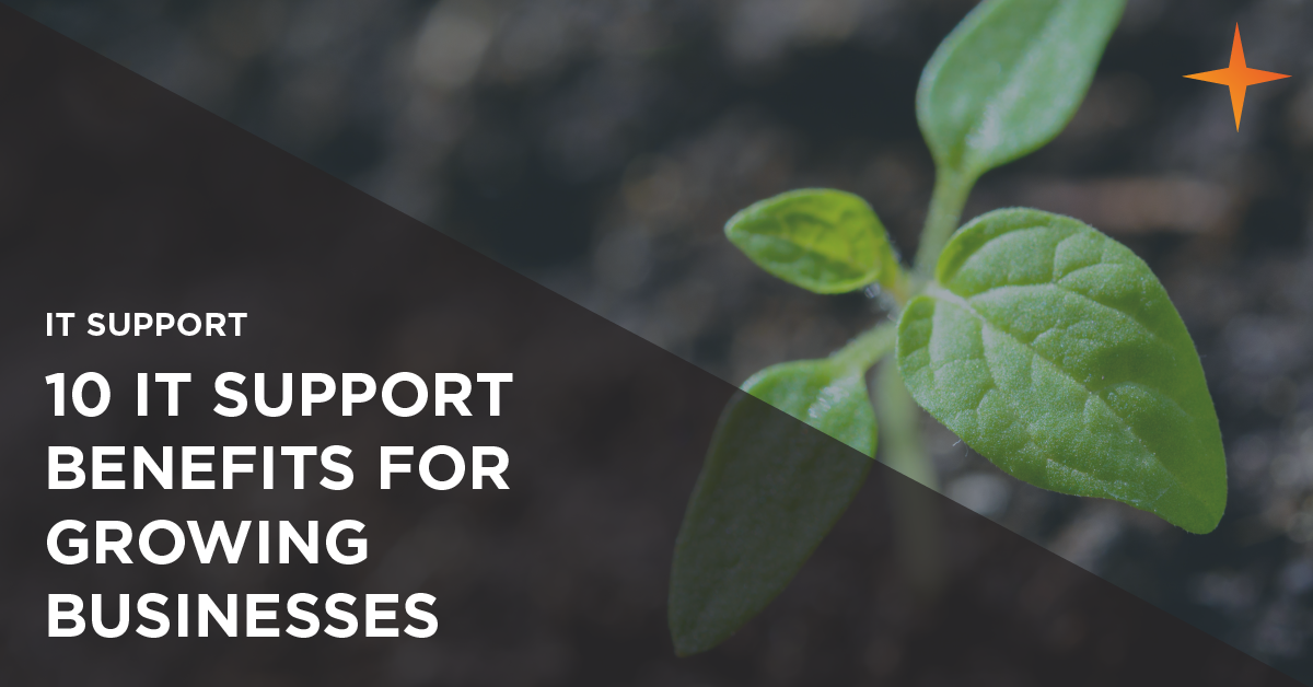 it support benefits for growing businesses